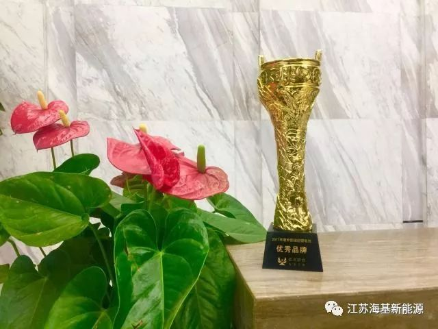 2017 Excellent Brand Award of China Energy Storage Battery